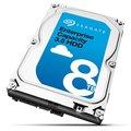 """Obrázok pre výrobcu Seagate Enterprise Capacity HDD, 3.5"""", 8TB, SAS, 7200RPM, 256MB cache"""