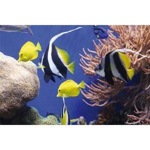 Obrázok pre výrobcu Fellowes Earth Series podložka pod myš, morské ryby