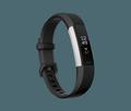 Obrázok pre výrobcu Fitbit Alta HR Black - Large