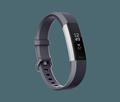Obrázok pre výrobcu Fitbit Alta HR Blue Gray - Large