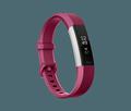 Obrázok pre výrobcu Fitbit Alta HR Fuchsia - Large