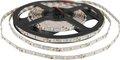 Obrázok pre výrobcu WE LED páska 5m | 60ks/m | 3528 | 4.8W/m | 12V DC | teplá biela
