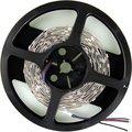Obrázok pre výrobcu WE LED páska 5m SMD50 120ks/28.8W/m 10mm RGB
