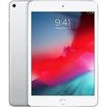 Obrázok pre výrobcu iPad mini Wi-Fi 64GB - Silver